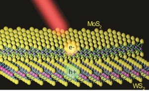 Illustration of a MoS2/WS2 heterostructure with a MoS2 monolayer lying on top of a WS2 monolayer. Electrons and holes created by light are shown to separate into different layers. (Image courtesy of Feng Wang group)
