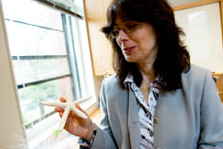 Biomaterials pioneer Joanna Aizenberg (pictured) has been named a new director of the Kavli Institute for Bionanoscience and Technology (KIBST) at Harvard University.