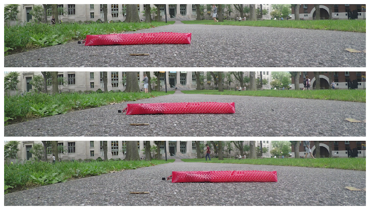 three stacked photos of a red robotic snake that is farther and farther across a sidewalk at Harvard